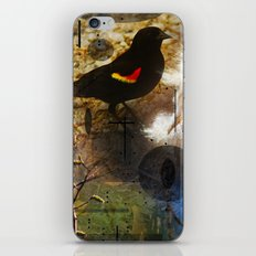 life thru the eyes of a red winged blackbird iPhone & iPod Skin