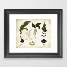 Root Vegetables Framed Art Print