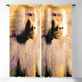 Primate Models:: Hamadryas baboon 01 Blackout Curtain