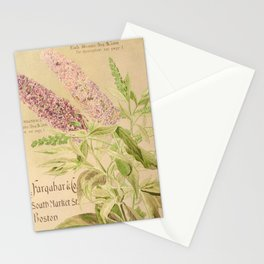 garden 076 buddleia magnifica Stationery Cards