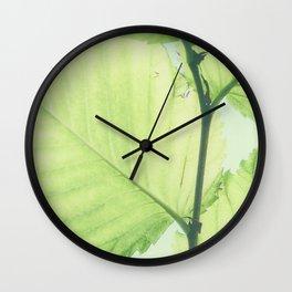 Turkish hazel leave – Baumhaselblätter Wall Clock