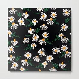 Chamomile Flowers on Black Metal Print