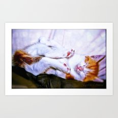 There are a thousand and one way to take a nap Art Print
