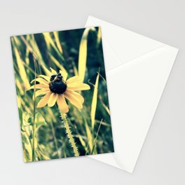 Pollinating Stationery Cards