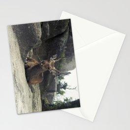 Deer on Rock Stationery Cards