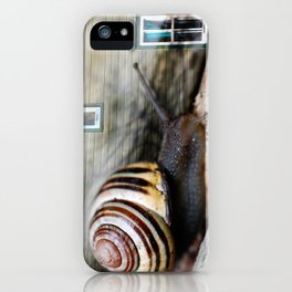Snail :: Room with a View iPhone Case