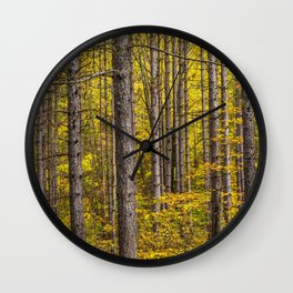Fall Colors among Pine Trees Wall Clock