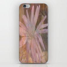 Misty Mauve iPhone & iPod Skin