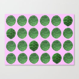 Turtle Shell Pink Canvas Print