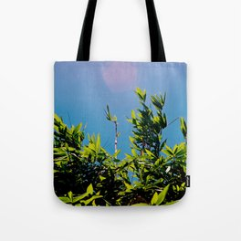 Bamboo in the sky with diamond Tote Bag