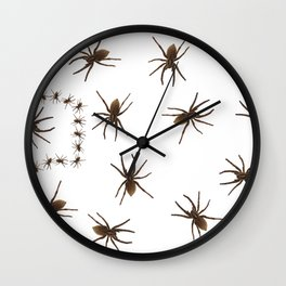 House spiders Wall Clock
