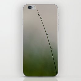 one blade of grass iPhone Skin