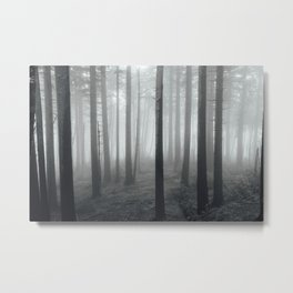 Foggy Oregon Forest, Landscape Photography Metal Print