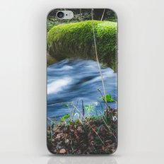 Enchanted magical forest iPhone & iPod Skin