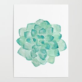 Watercolor Succulent print in seafoam green Poster