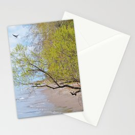 Land Sea and Sky Stationery Cards