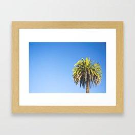California Palm Tree Framed Art Print
