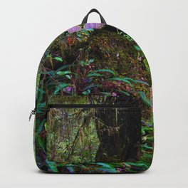 Rainforest Trail, Vancouver Island BC Backpack