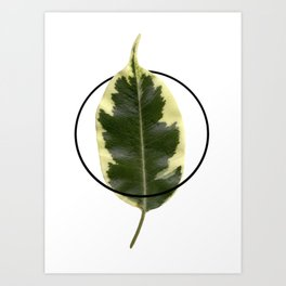 Nature. Minimalism. Photo. Society6. Minimalist. Hybrydus. II Art Print