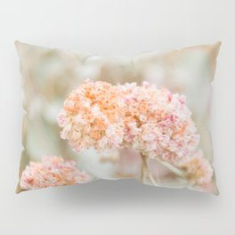 Blooming in the Dunes Pillow Sham