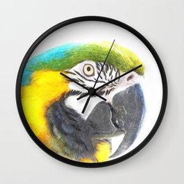 Macaw portrait Wall Clock