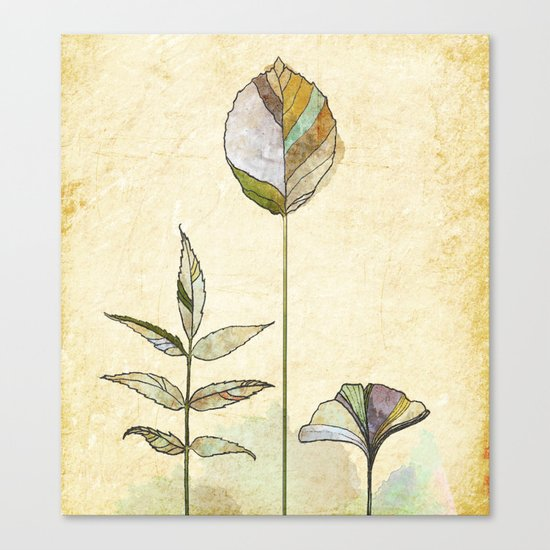 Leaf Study Canvas Print