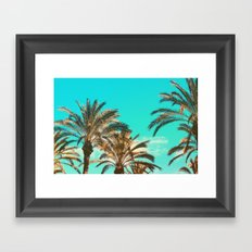 Tropical Palm Trees  - Vintage Turquoise Sky Framed Art Print