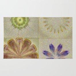 Jean'S Consonance Flowers  ID:16165-071253-84670 Rug