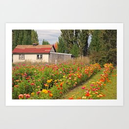 Out in the Country Art Print