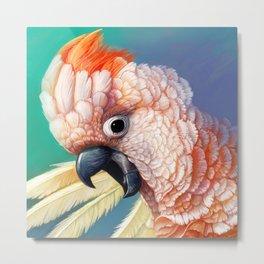 Moluccan Cockatoo realistic painting Metal Print