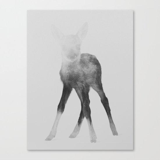 Deer Fawn (black & white version) Canvas Print