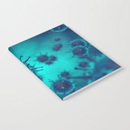 Viral disease Notebook