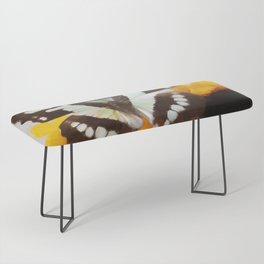 Summer Butterfly Bench