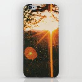 Shimmering Web • Appalachian Trail iPhone Skin