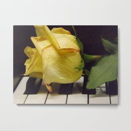 Melody Of A Rose Metal Print