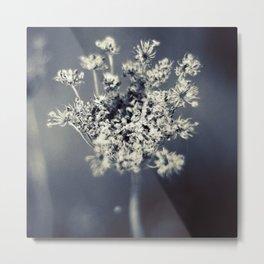 Flower B4 Metal Print
