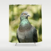 pigeon Shower Curtains featuring Pigeon by Vishal Wadhwani