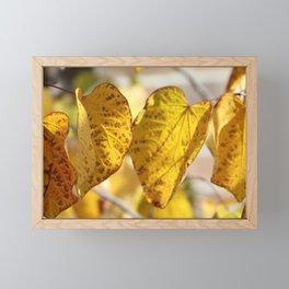 golden leaves Framed Mini Art Print