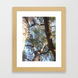 A Shattered Sky Framed Art Print
