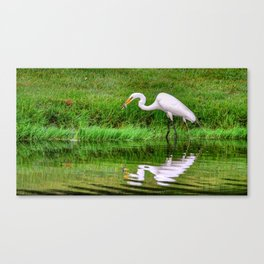Breakfast On The Green Canvas Print