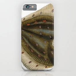Atlantic halibut (Hippoglossus hippoglossus)  from The Natural History of British Fishes (1802) by E iPhone Case