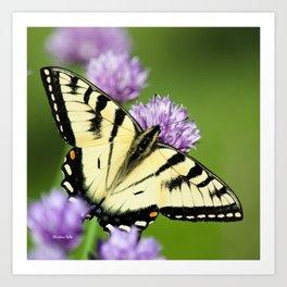 Garden Butterfly Art Print