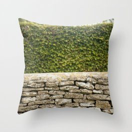 Wall and Hedge Throw Pillow