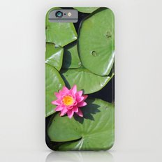Pink Flower in the Pond Slim Case iPhone 6s