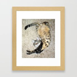 Stretch and Relax! Framed Art Print