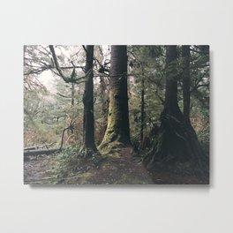Soft Trees Metal Print