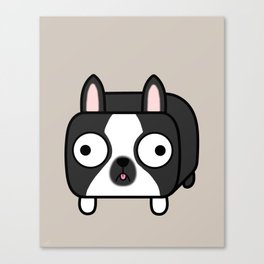 Boston Terrier Loaf - Black and White Dog Canvas Print