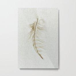 Owl Feather Photograph - Fleeting Metal Print