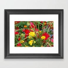 dmdm Framed Art Print