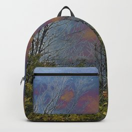 Winters Approach; Spring Stays Imbeded Backpack